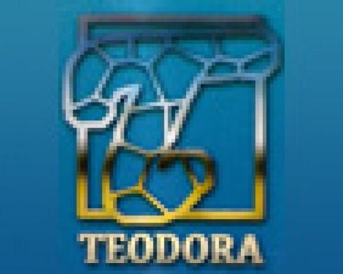 Dekorativna štampa šolja Teodora