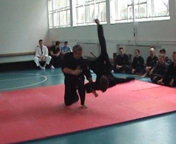 Borilačke veštine Hapkikwan International