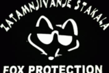 Zatamnjivanje stakala Fox Protection