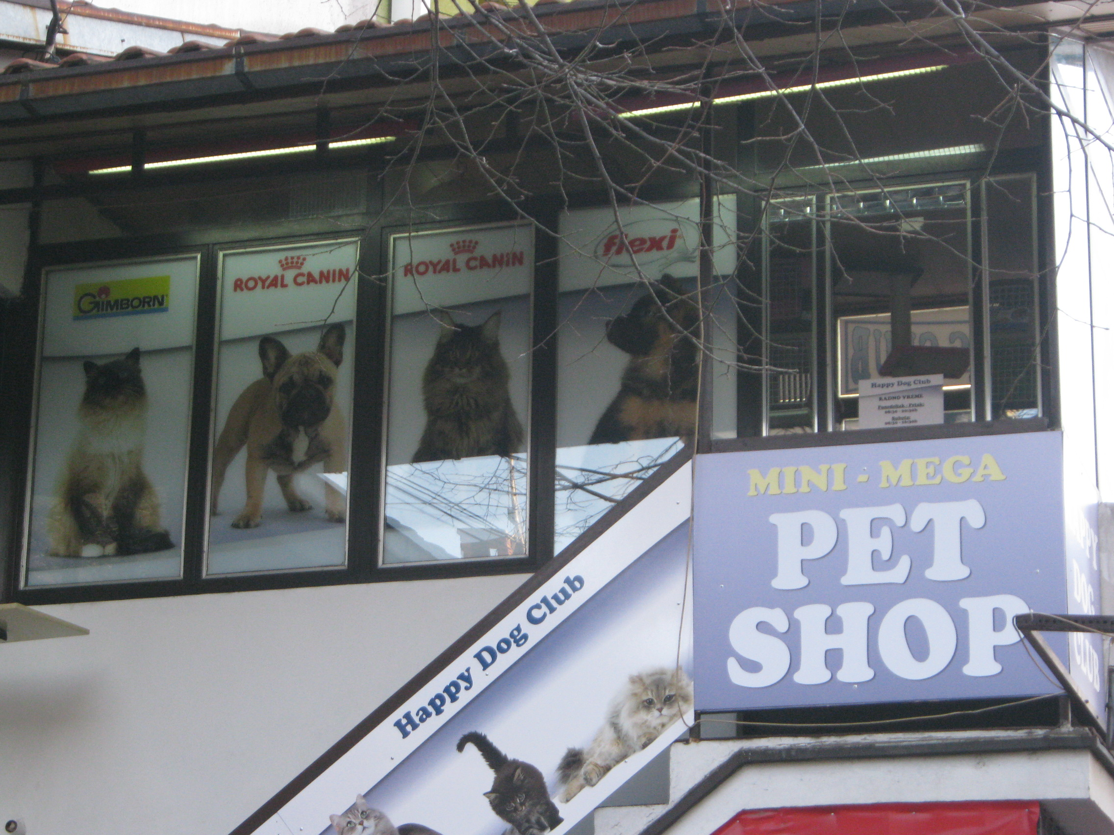 Pet shop Happy Dog Club
