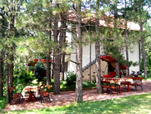 Vila Zora u borovima
